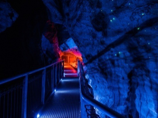 Discover spectacular Ruakuri Cave, full of legends and tales. Go deeper into the story as you descend the dramatic spiral entrance. Your two hour trip will include an intimate and educational experience with small tour groups.